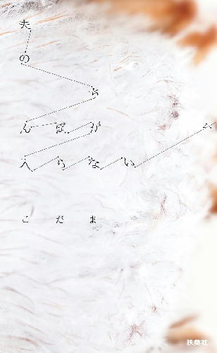 61BDj9NZ-pL.jpg