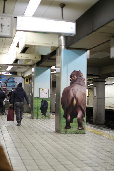 動物園前.JPG