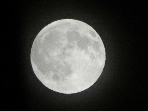 月見るなんて.JPG