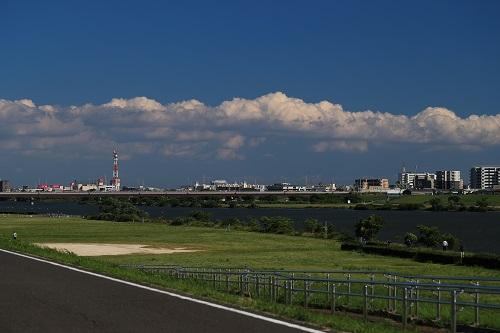 梅雨の晴れ間の行徳橋.JPG