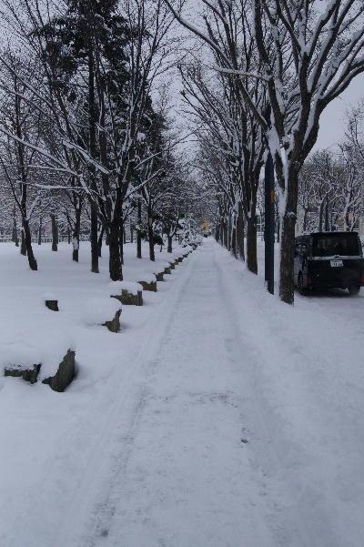 除雪が入る.JPG